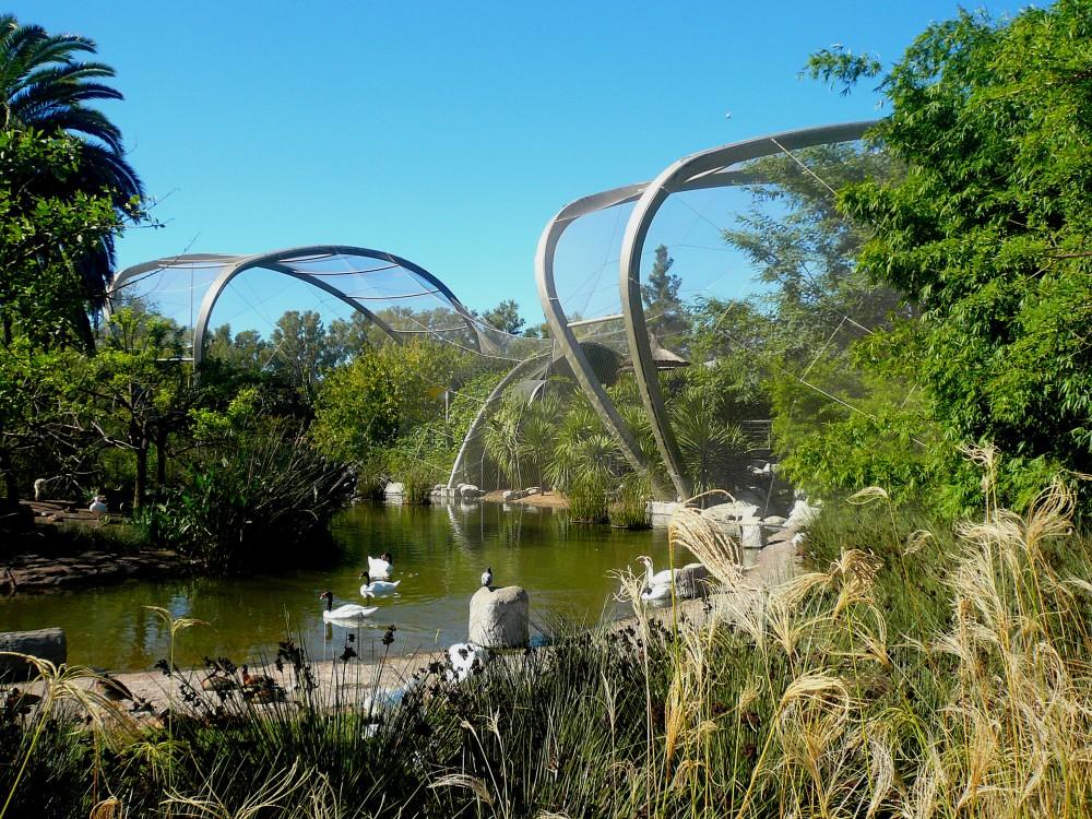 نمایش سازه  معماری بیونیک:طراحی پارک و معماری منظر | آرل