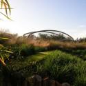 معماری بیونیک:طراحی پارک و معماری منظر