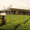 House in a Tea Garden / RMA Architects  Rahul Mehrotra