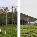 House in a Tea Garden / RMA Architects  RMA Architects