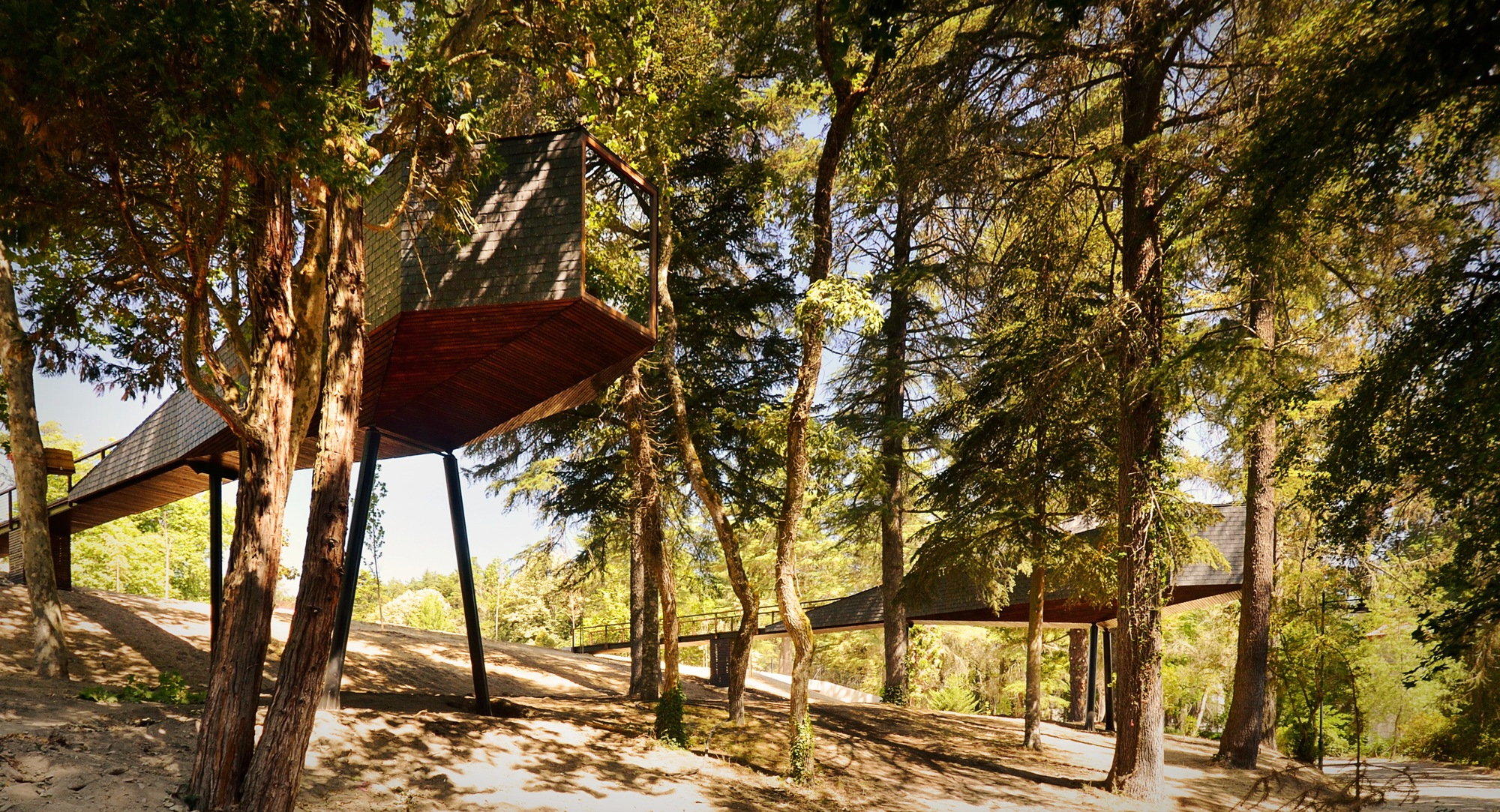 Tree Snake House is a Lofted Luxury Getaway by Pedras Salgadas Park, Luís and Tiago Rebelo de Andrade