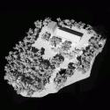 Cherry Blossom House / TRU Architects Model