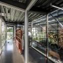 Pakkred Office  / Geodesic Design Co © Pirak  Anurakyawachon