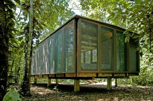 Casa Na Mata Nitsche Arquitetos Archdaily