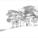 Pulau Banding Rainforest Research Centre / C' arch West Elevation