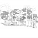 Pulau Banding Rainforest Research Centre / C' arch South Elevation