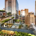Grimshaw Unveils Sustainable Glass Office Building in the Heart of Sydney Roof Terrace View. Image Courtesy of Grimshaw Architects and Crone Partners
