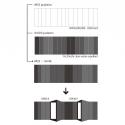 KURO Building / KINO Architects Diagram