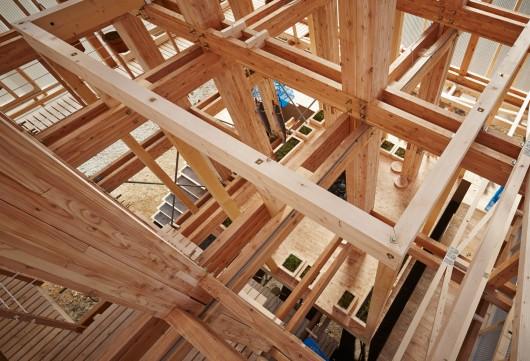 http://ad009cdnb.archdaily.net/wp-content/uploads/2015/01/54c9b003e58ece457a000214_nest-we-grow-college-of-environmental-design-uc-berkeley-kengo-kuma-associates_nest-we-grow_049-530x361.jpg