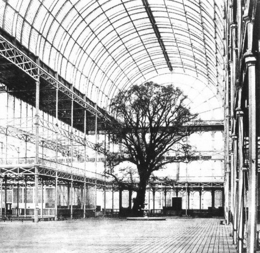 The Architectural Lab: A History Of World Expos 55418fc3e58ece706c000342 the architectural lab a history of world expos  crystal palace great exhibition tree 1851 530x515